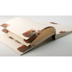 Album tradycyjny zdjęcia dziecka 60 stron Walther